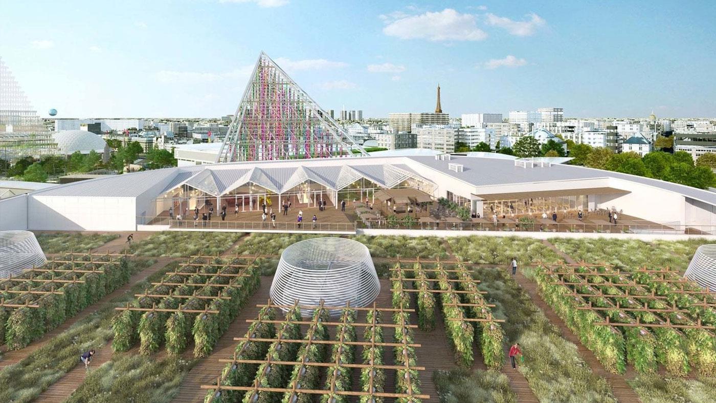 Impacto da agricultura urbana nas cidades do futuro