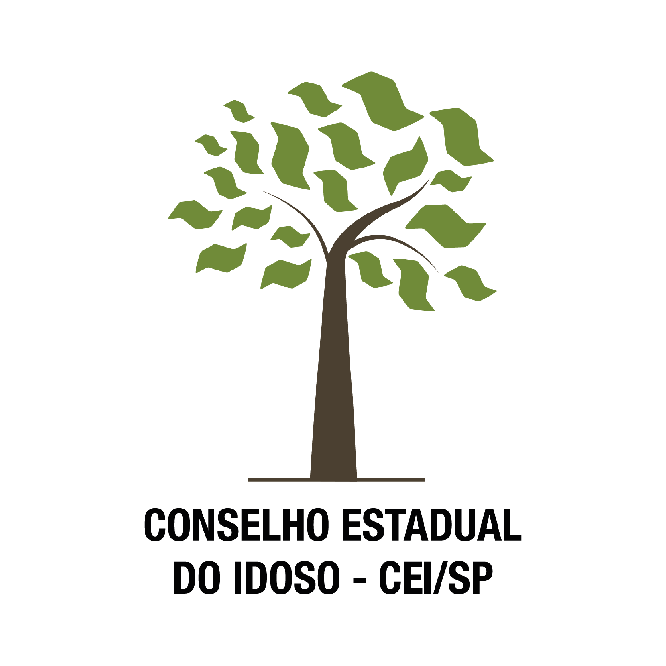 Conselho do Idoso (Sec. Desenvolvimento Social Estado de SP)