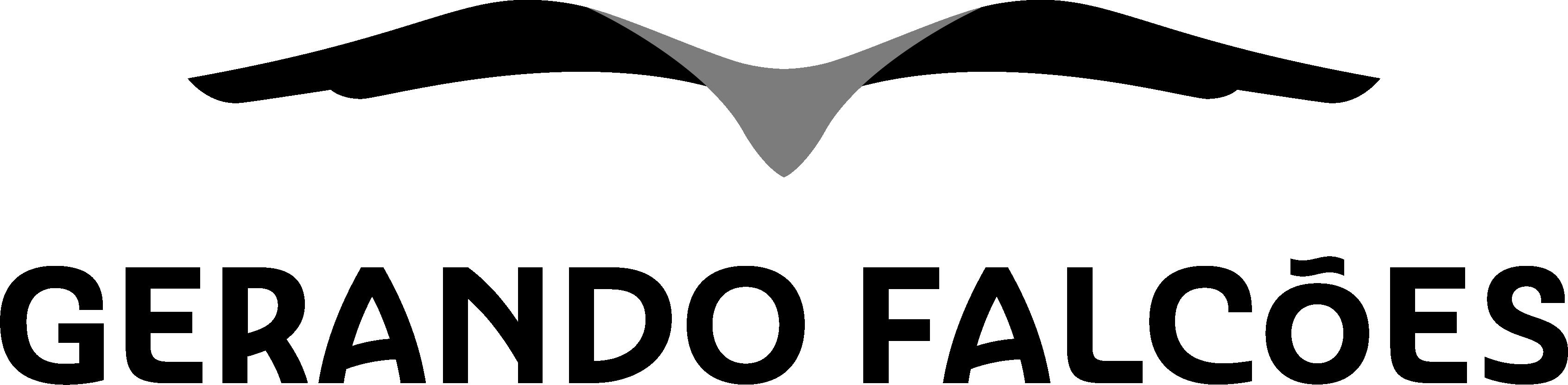 Instituto Gerando Falcões
